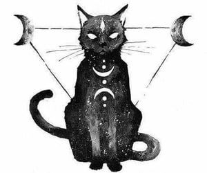 cat, moon, and art image