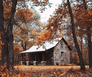 autumn, cottage, and fall image