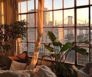 plants, window, and city image