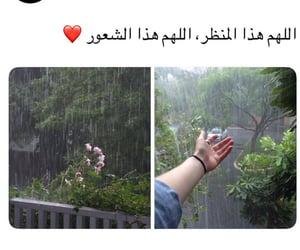 arabic, حُبْ, and ًورد image