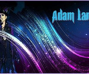 adam lambert, wallpaper, and fond ecran image
