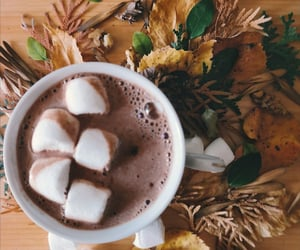 autumn, cocoa, and delicious image