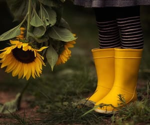 photo, yellow boots, and photography image