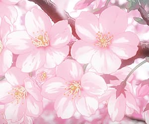 anime, cherry blossoms, and nature image