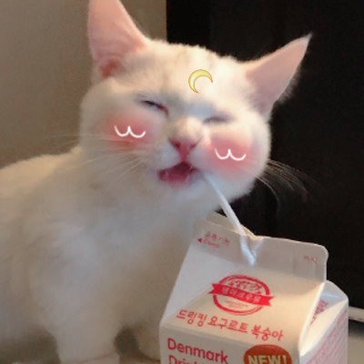 cat, aesthetic, and milk image