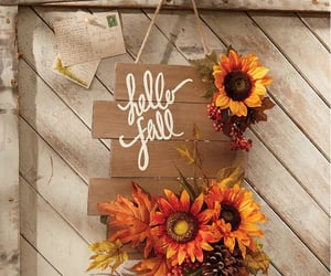 autumn, fall, and sunflower image