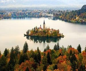 autumn, lake, and slovenia image