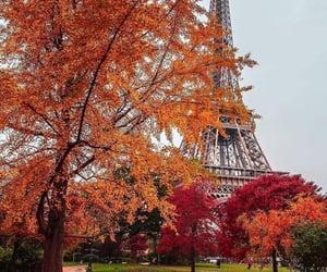 autumn, fall, and paris image