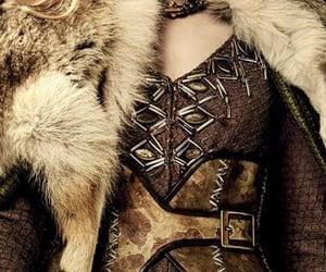 fur, vikings, and brown image