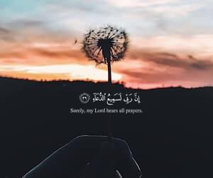 islam, استقم, and لنهتدي image