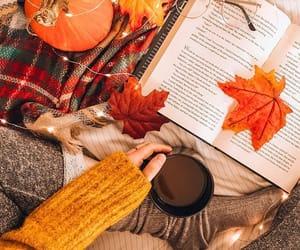 autumn, autumnal, and book image