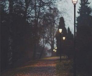 camino, city, and night image
