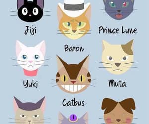 cat and ghibli image