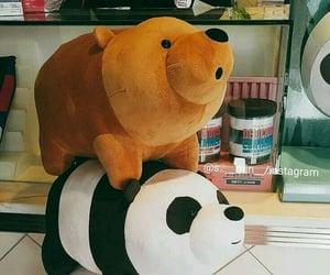 panda, bear, and polar image