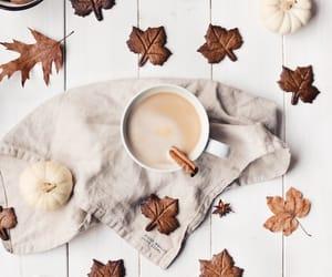 autumn, chestnuts, and Cinnamon image