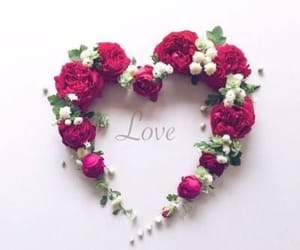 love, heart, and love♡ image