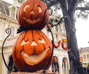 autumn and pumpkins image
