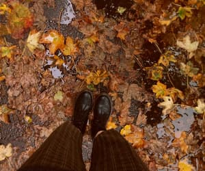 autumn, cosy, and fall image