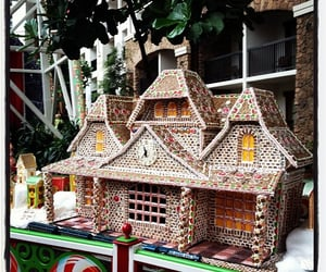gingerbread house, grapevine, and instagram app image