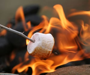 marshmallow, fire, and fall image