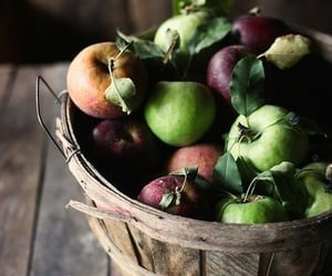 apple, fruit, and autumn image