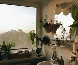 bathroom and plants image