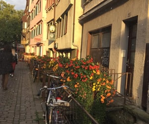 alemania, flowers, and street image