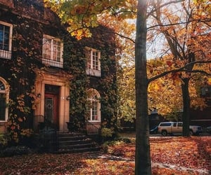 autumn, exterior, and fall image