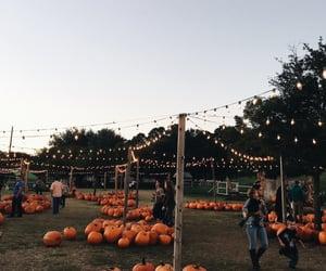 fall, fun, and lights image