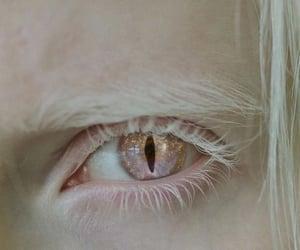 eyes, dragon, and eye image