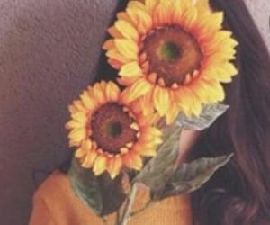 sunflower, girl, and yellow image