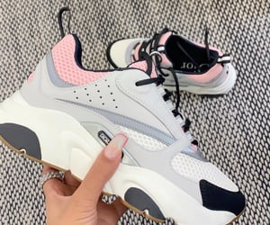 dior and sneakers image