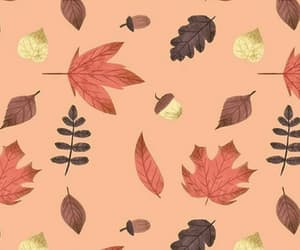autumn, background, and pattern image