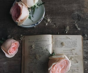 book, inspiration, and old image