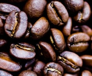 addiction, background, and real coffee image