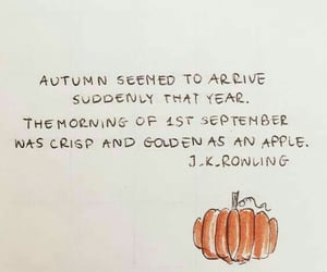 autumn, harry potter, and pumpkins image