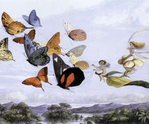 butterfly, fairy, and fairy tale image