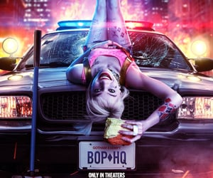 DC, harley quinn, and movie image