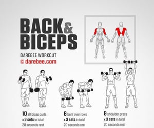 back, workout, and biceps image