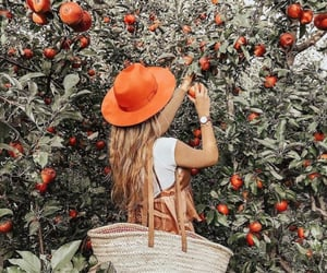 apples, blonde girl, and field image