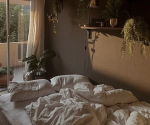 inspo, plants, and room image