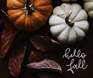 autumn, fall, and welcome fall image