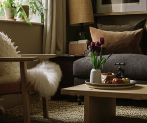 chairs, comfort, and elegance image
