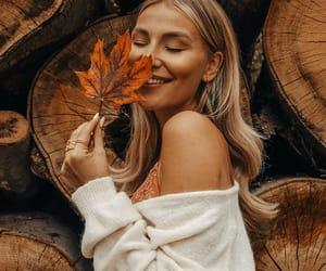 autum, fall, and orange image
