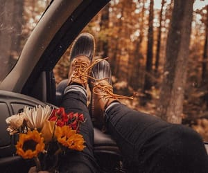 brown, cozy, and fall image