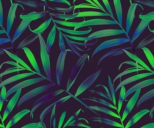 green, wallpaper, and plant image