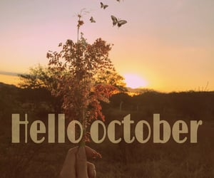 autoral, welcome, and fall image