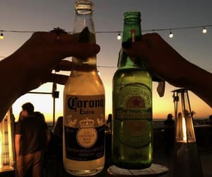 alcohol, beer, and beers image