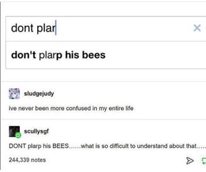 bees, funny, and lol image