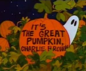 Halloween, charlie brown, and pumpkin image